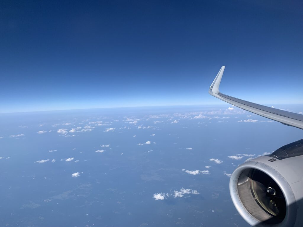 AA A321 wing